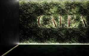 Logo mit Moos im Calea Dinner-Club Wien, Foto: Calea Club